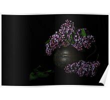 Lilacs and Patina Poster