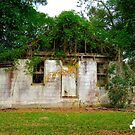 Abandoned House by TJ Baccari Photography