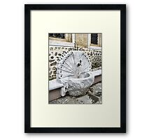 Fountain Peacock Framed Print