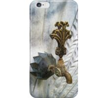 Faucet-Peacock iPhone Case/Skin