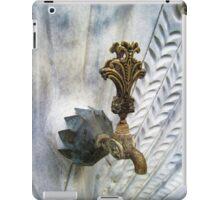 Faucet-Peacock iPad Case/Skin
