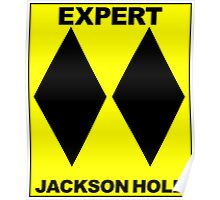 JACKSON HOLE WYOMING DOUBLE BLACK DIAMOND SKIING SKI EXPERT ONLY Poster