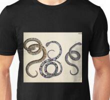 Naturgeschichte in Bildern mit erläuterndem Text E Strack 1820 Lief 3 Reptiles 032 Unisex T-Shirt