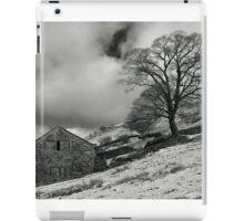 Snowy Ruin iPad Case/Skin