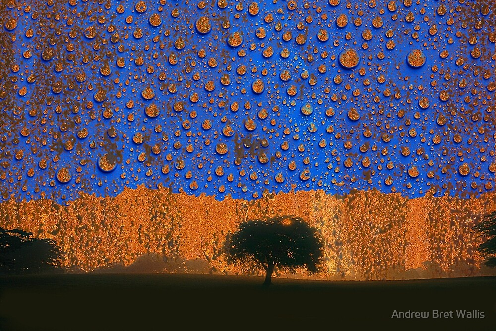 Acid Rain by Andrew Bret Wallis