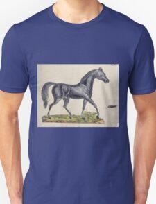 Naturgeschichte in Bildern mit erläuterndem Text E Strack 1820 Lief 1 Mammals 047 T-Shirt