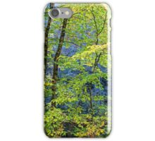 Nantahala  iPhone Case/Skin