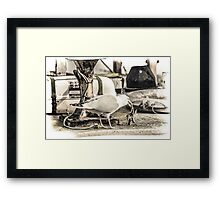 Seagull with Starfish Framed Print