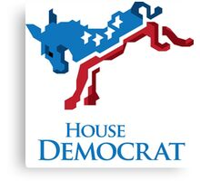 House Democrat Canvas Print
