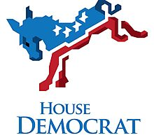 House Democrat Photographic Print
