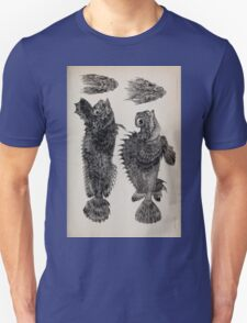Proceedings of the Zoological Society of London 1848 - 1860 V4 Reptilia 036 T-Shirt