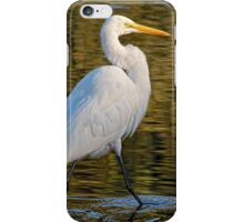 Great Egret Stroll      iPhone Case/Skin