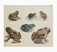 Naturgeschichte in Bildern mit erläuterndem Text E Strack 1820 Lief 3 Reptiles 018 Kids Tee