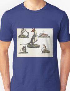 Naturgeschichte in Bildern mit erläuterndem Text E Strack 1820 Lief 1 Mammals 015 T-Shirt
