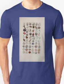 Index testaceologicus an illustrated catalogue of British and foreign shells 036 T-Shirt