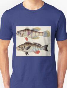 Naturgeschichte in Bildern mit erläuterndem Text E Strack 1820 Lief 4 Fish 099 T-Shirt