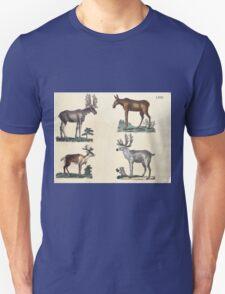 Naturgeschichte in Bildern mit erläuterndem Text E Strack 1820 Lief 1 Mammals 068 T-Shirt