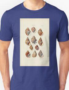 Thesaurus conchyliorum Monographs of genera of shells George Brettingham Sowerby 1887 V1-V5 322 T-Shirt