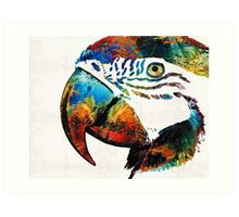 Parrot Head Art By Sharon Cummings Art Print