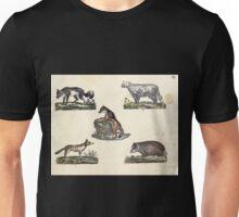 Naturgeschichte in Bildern mit erläuterndem Text E Strack 1820 Lief 1 Mammals 009 Unisex T-Shirt