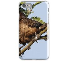 cactus wren iPhone Case/Skin