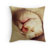 Cute cat is sleeping Throw Pillow
