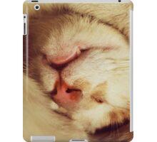 Cute cat is sleeping iPad Case/Skin