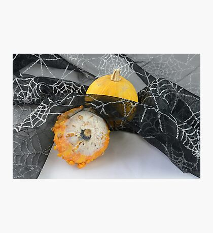 Halloween pumpkin and gourd Photographic Print