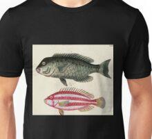 Naturgeschichte in Bildern mit erläuterndem Text E Strack 1820 Lief 4 Fish 072 Unisex T-Shirt
