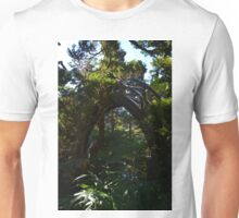 Round bridge Unisex T-Shirt