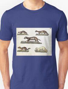 Naturgeschichte in Bildern mit erläuterndem Text E Strack 1820 Lief 1 Mammals 013 T-Shirt