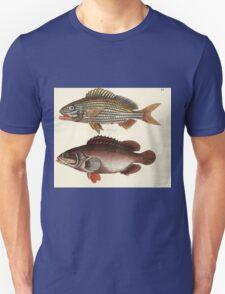 Naturgeschichte in Bildern mit erläuterndem Text E Strack 1820 Lief 4 Fish 105 T-Shirt