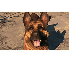 Fallout 4 Dogmeat Print Photographic Print