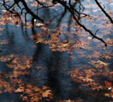 Oak Branch and Leaves in Frozen Lake Sticker