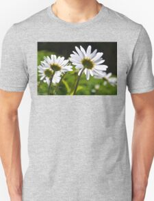 Daisy backs........Dorset UK T-Shirt