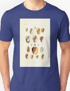 Thesaurus conchyliorum Monographs of genera of shells George Brettingham Sowerby 1887 V1-V5 080 T-Shirt