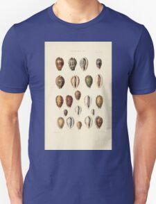 Thesaurus conchyliorum Monographs of genera of shells George Brettingham Sowerby 1887 V1-V5 413 T-Shirt