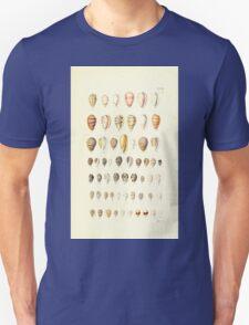 Thesaurus conchyliorum Monographs of genera of shells George Brettingham Sowerby 1887 V1-V5 079 T-Shirt