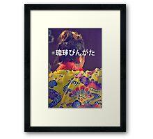 RYUKYU OKINAWA BINGATA ODORI PHOTOGRAPHY  Framed Print