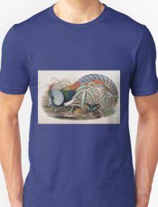 Birds of Asia John Gould 1883 V1 V7 478 Thaumalea Amherstiae T-Shirt