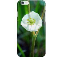 Mayapple Blossom iPhone Case/Skin