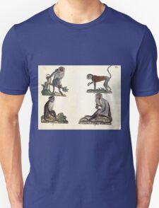Naturgeschichte in Bildern mit erläuterndem Text E Strack 1820 Lief 1 Mammals 038 T-Shirt