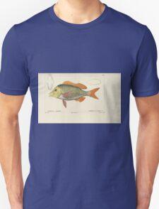Natural History Fish Histoire naturelle des poissons Georges V1 V2 Cuvier 1849 090 T-Shirt