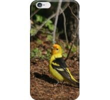 Female Western Tanager iPhone Case/Skin