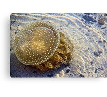 White Spotted Jelly Fish Metal Print