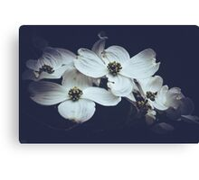 Dogwoods Dressed in Darkness Canvas Print
