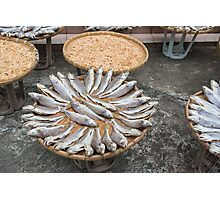 Dried fish Photographic Print