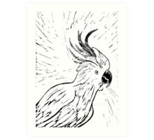 Cocky Art Print