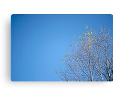Clear Breeze Canvas Print