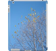 Clear Breeze iPad Case/Skin